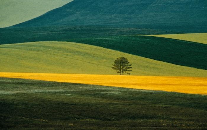 Цветовой контраст в фотографии