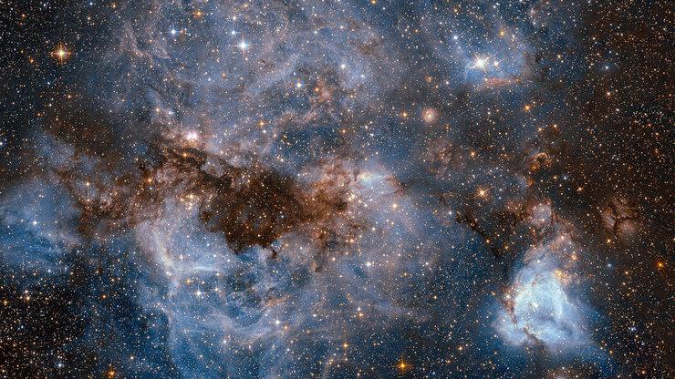 NASA выступило спредложением кастрологам
